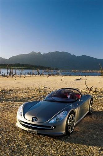 Peugeot 607 FELINE