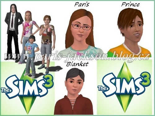 PPBM-the Sims