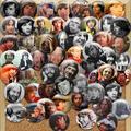 Peter Tork Collage (1)