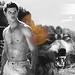 Taylor/Jacob <33 - taylor-lautner icon