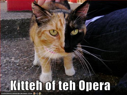 The Kitty of The Opera