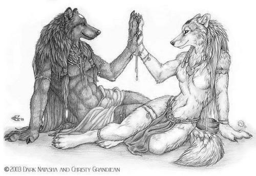 serigala, wolf Kekasih