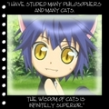 hmmm??? - shugo-chara-chara-time photo