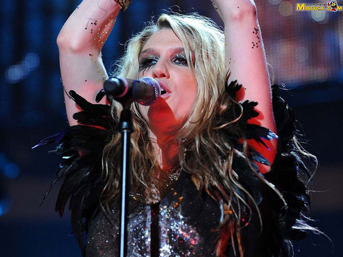 Ke$ha wallpaper titled kesha!!!!!!!!!!!!