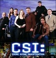 CSI Las Vegas - ncis-vs-csi photo