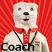Coach Skip - fantastic-mr-fox icon