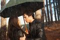 Damon and Elena - damon-salvatore photo