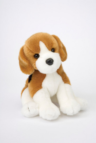 Anjing <3