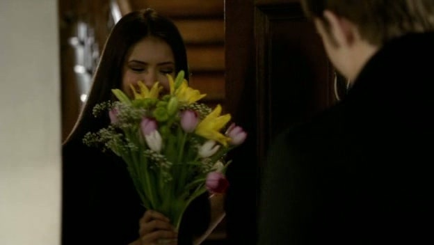 http://images2.fanpop.com/image/photos/11200000/Episode-1x16-There-Goes-The-Neighborhood-the-vampire-diaries-11235419-624-352.jpg