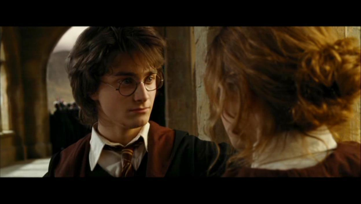 Harry and Hermione ima...