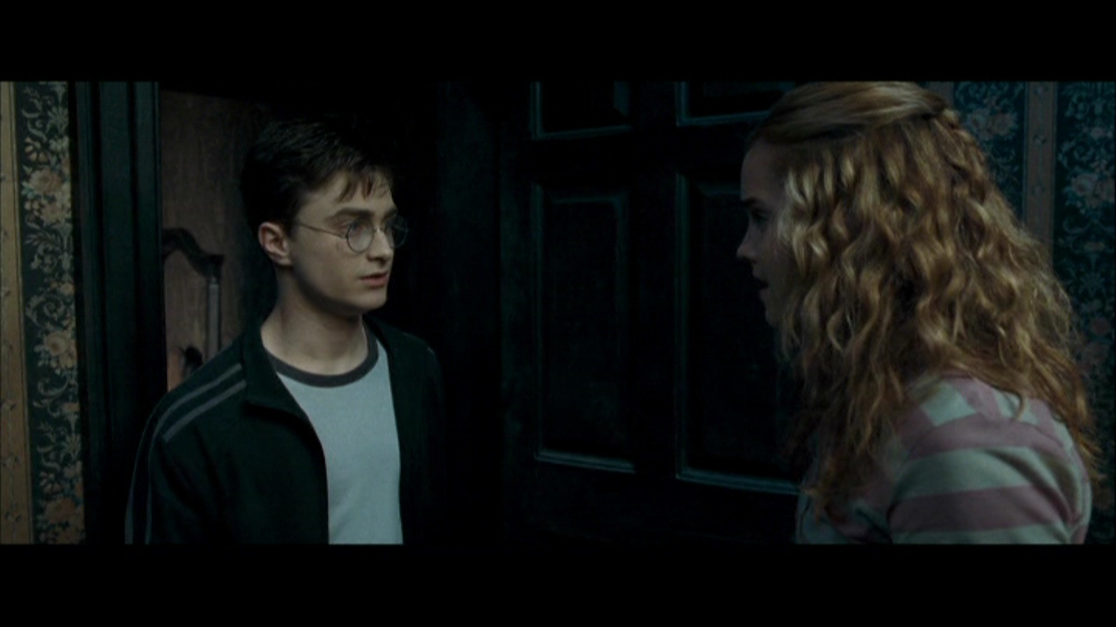 Harry and hermione images harmony order of the phoenix - Hermione granger harry potter and the order of the phoenix ...