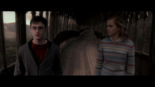 Harry and Hermione achtergrond titled Harmony - Order of the Phoenix