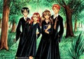 Harry Ron Ginny and Hermione