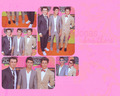 JoBros Wallpaper - the-jonas-brothers wallpaper