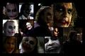 Joker's Wild - heath-ledger photo