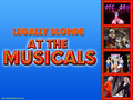 Legally Blonde The Musical At The Musicals - legally-blonde-the-musical wallpaper