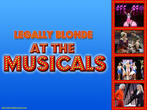 Legally Blonde the Musical images Legally Blonde The Musical At The Musicals HD wallpaper and background photos
