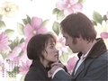 Pride and Prejudice - april