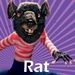 Rat - fantastic-mr-fox icon