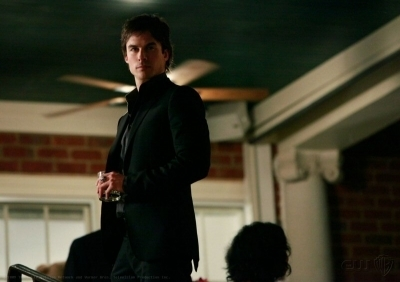 Damon and Stefan Salvatore 壁紙 entitled Salvatore