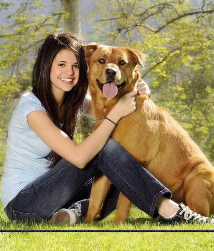 Selena dog