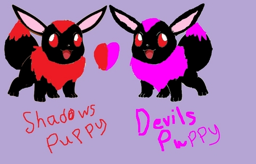 Shadows and Devils puppy