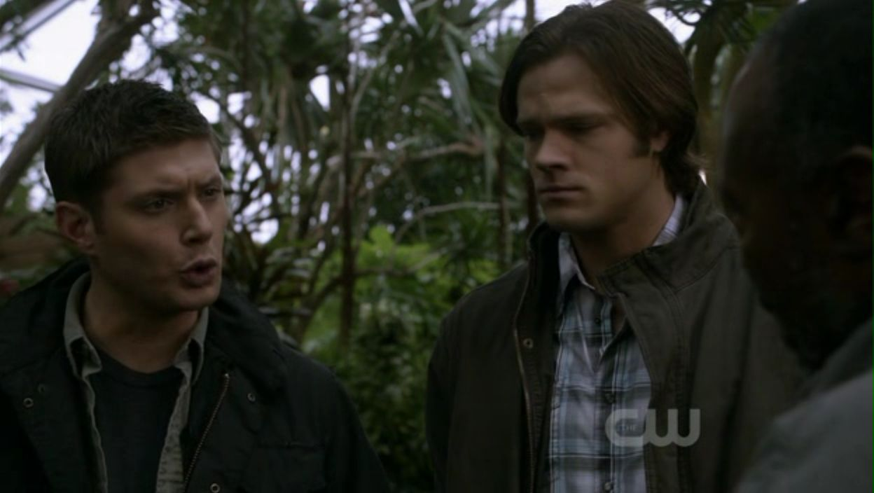 supernatural season 1 torrent