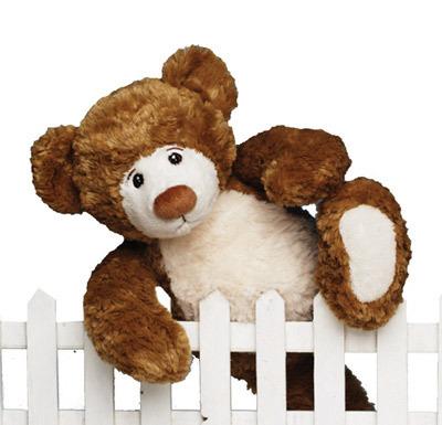 Stuffed animals teddy bear