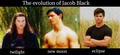 The Evolution Of Jacob - twilight-series photo