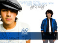 The Jonas Brothers - the-jonas-brothers wallpaper