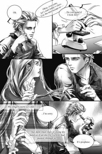 Twilight:Graphic Novel