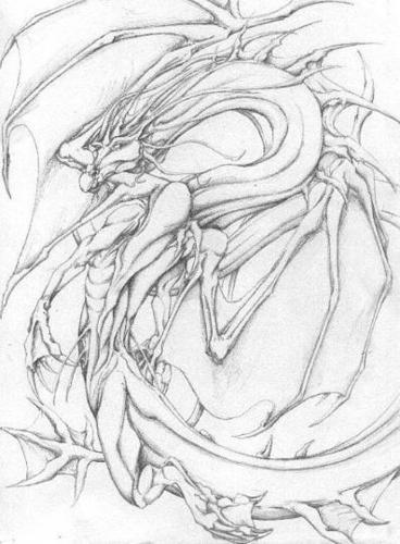 Winged Sea Dragon