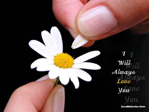 i'll always Cinta u