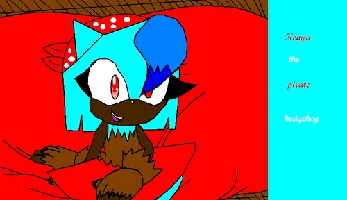 Girl sonic fan characters wallpaper entitled kenya the pirate hedgehog