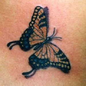 real butterfly, kipepeo tattoo's