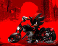 shadow the hegehog