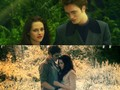 :) - twilight-series photo