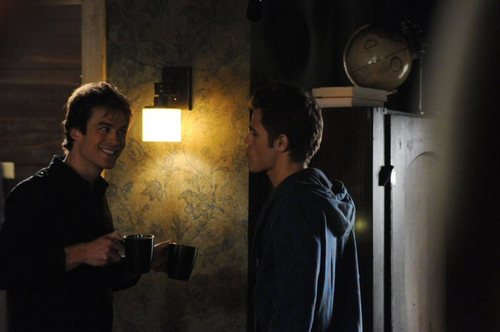 Damon and Stefan Salvatore 壁紙 called 1x09 - History Repeating