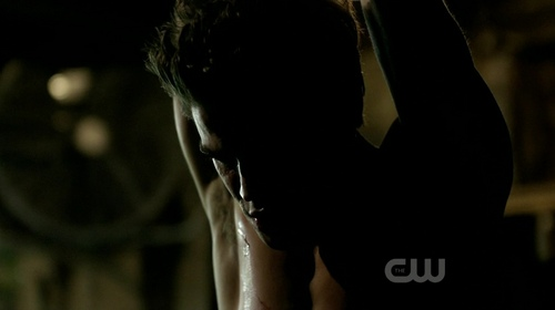 Stefan Salvatore 壁纸 titled 1x17 - Let The Right One In