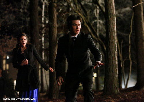 http://images2.fanpop.com/image/photos/11300000/1x19-Miss-Mystic-Falls-the-vampire-diaries-tv-show-11309320-500-353.jpg