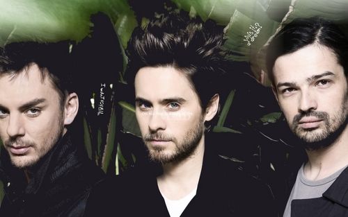 30 segundos to mars wallpaper titled 30 STM