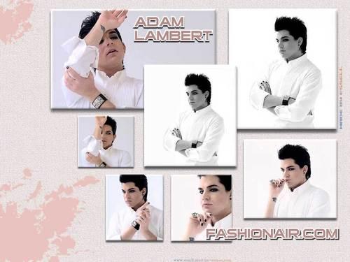 Adam Fashionair 壁紙