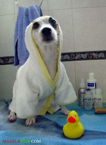BATH TIME!!!!!!!!!!!!!!