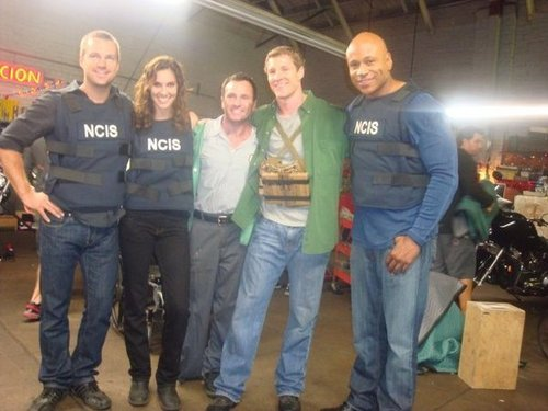 NCIS: Los Angeles Обои called Chris, Daniela, LL Cool J