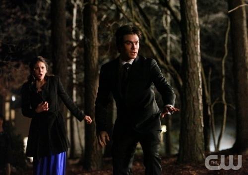 Damon & Elena 1x19