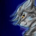 Darkstripe - spiritclan photo