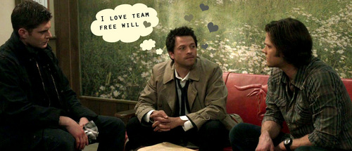 I cinta Team Free Will