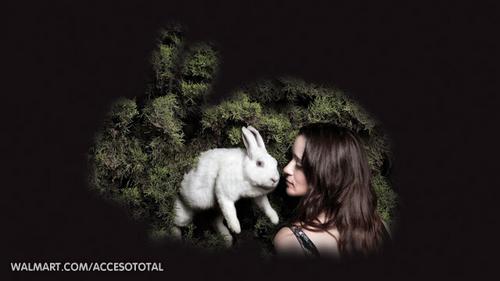 Julieta Venegas en @Acceso Total