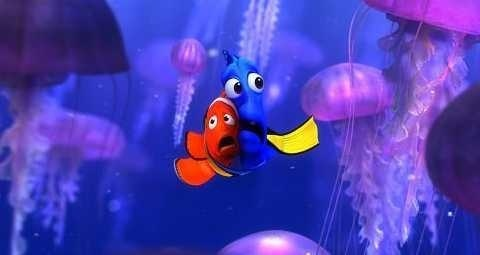 aguja, marlin and Dory