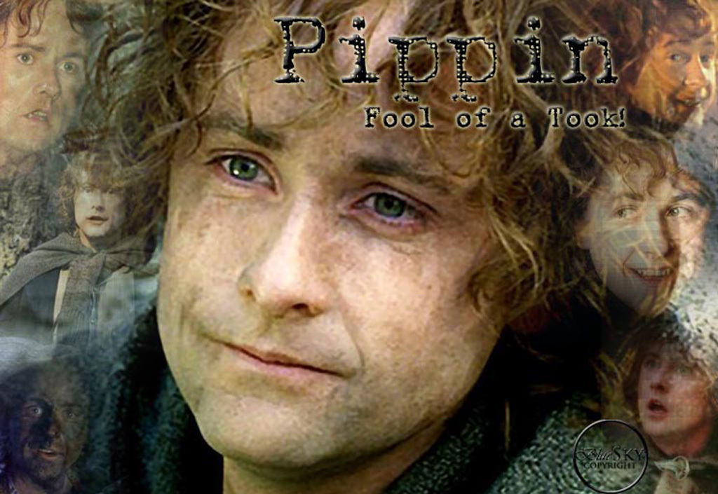 Pippin Pippin-pippin-took-11311005-1024-705